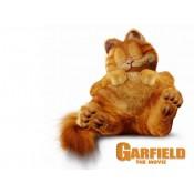 Торта Гарфилд