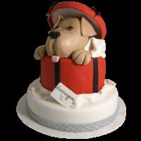 Торта Куче в кутия